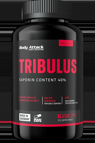 Body Attack Tribulus Terrestris 2400 - 150 Maxi-Caps - Abbildung vergrößern!