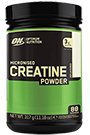 Optimum Nutrition Creatine Powder - 317g